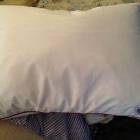 Temprakon Ergomagic Pillow
